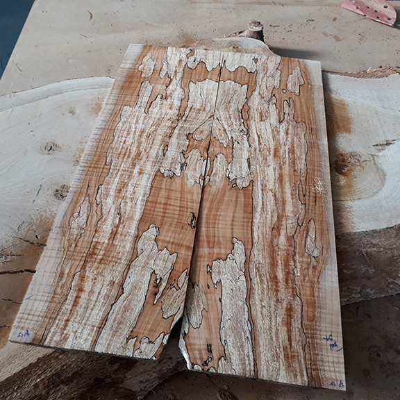 spalted-maple-576